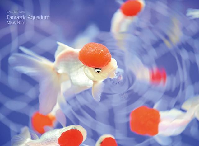 画像: カメラマン 2020カレンダーシリーズ 30 水咲奈々 「Fantastic Aquarium」-モーターマガジン Web Shop