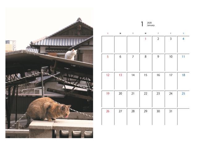 画像6: mm-style.jp