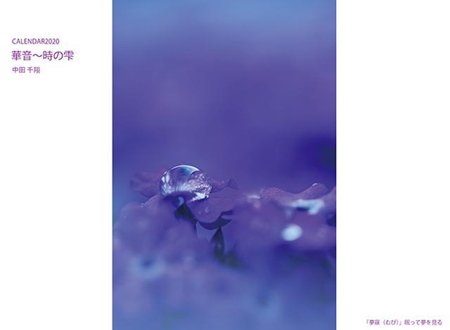 画像: カメラマン 2020カレンダーシリーズ 23 中田千翔 「華音〜時の雫」-モーターマガジン Web Shop