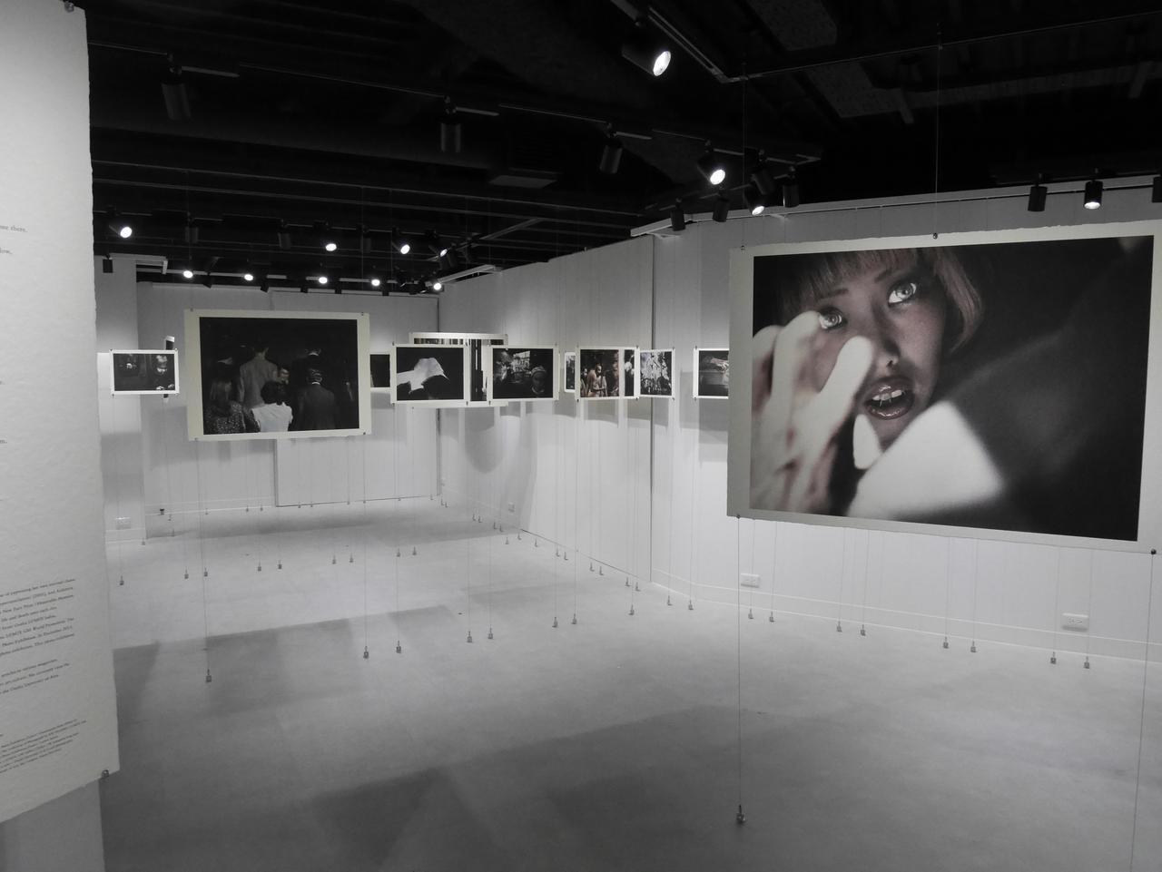 """画像1: 田川梨絵さんによる写真展「私の手の中に花を摘む」が東京・銀座"""" LUMIX GINZA TOKYO""""にて11月27日(水)まで開催中。"""