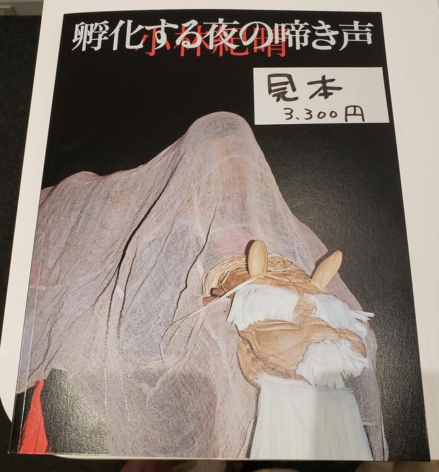 画像: 会場では、赤々舎から出版された本展と同名の写真集『孵化する夜の啼き声』(3,300円+税) も販売中です。