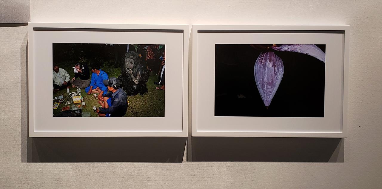 画像: 写真左)沖縄の宮古島に伝わる厄払いの伝統行事「パーントゥ」。 年に1度、仮面をつけ、泥だらけの体に蔓草を巻き付けた3体の来訪神「パーントゥ」が、集落を回り島民や建物に泥を塗りつけ、厄払いをするお祭りです。この作品では島民に怖がられる存在の「パーントゥ」が、島民たちの少し後ろに一緒に座る光景が、どことなく奇妙で微笑ましく感じました。