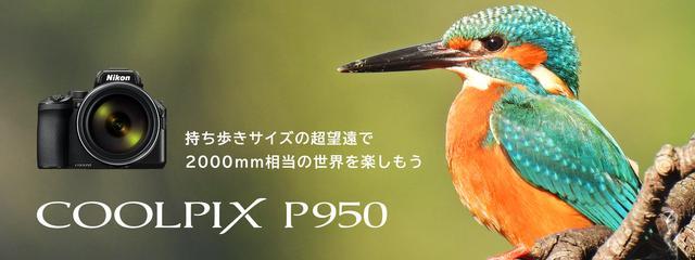 画像: COOLPIX P950-概要 | コンパクトデジタルカメラ | ニコンイメージング
