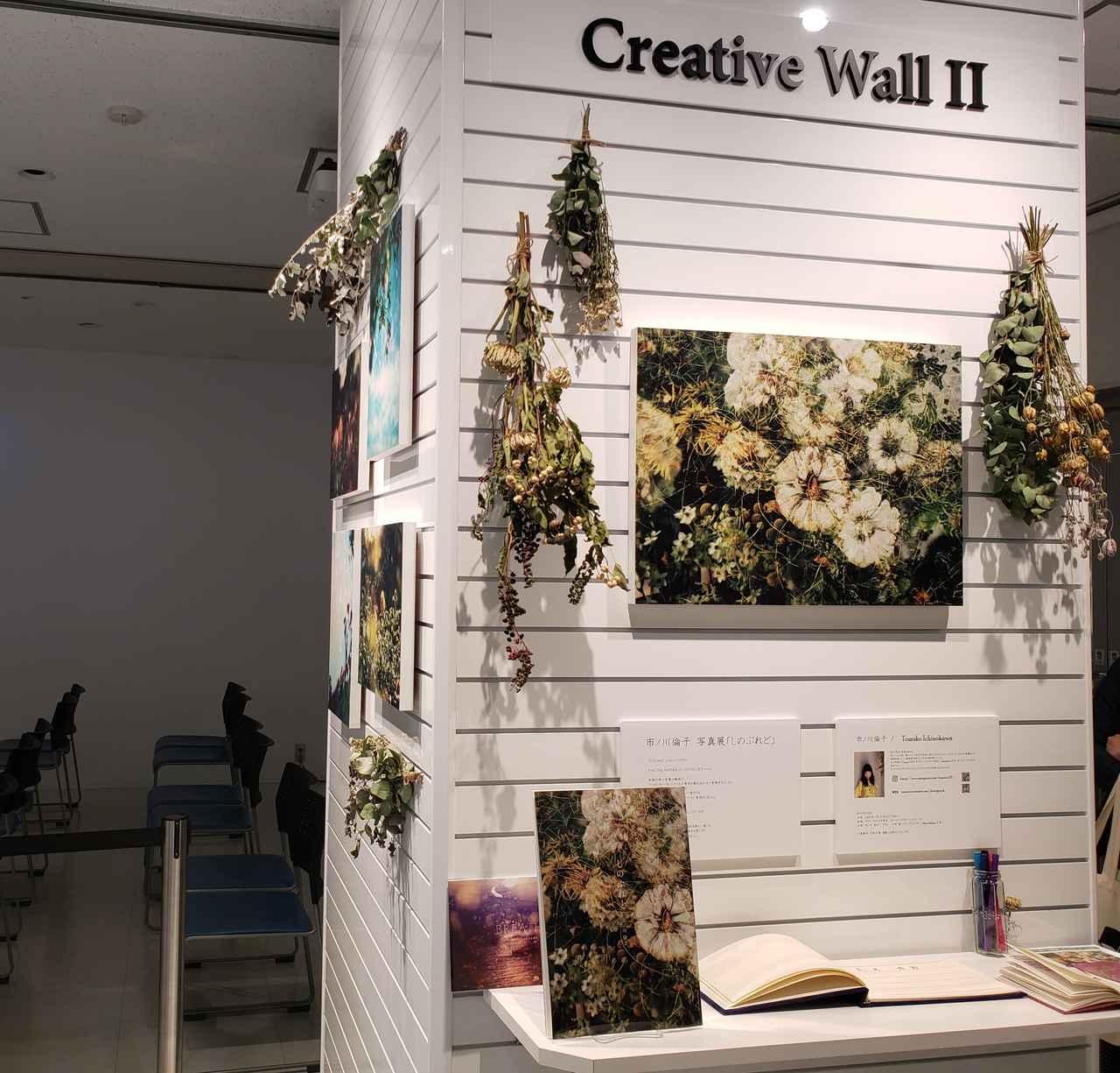 画像: 展示風景。会場では、市ノ川さんの作品制作においても欠かせないという「光と影」を意識し、市ノ川さんご自身 が束ねたスワッグも飾られています。また、写真集「しのぶれど」「BREATH」(各3,000円+送料)も受注販売されています。