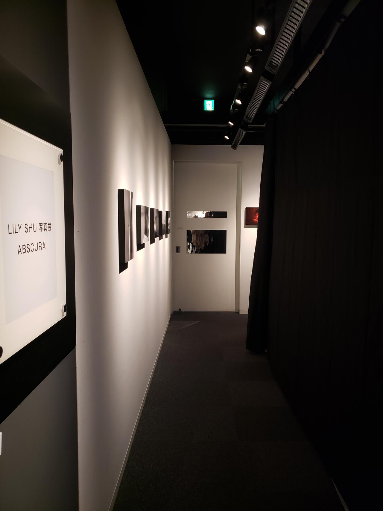 画像: 会場の入り口を入るとすぐに、空間は黒い布と遮光布が縫い合わされたカーテンで仕切られ、まるで洞窟に入ったような感覚に。