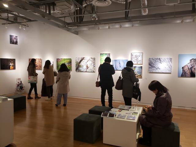画像: 会場風景。会場には多くの来場者が訪れていました。1枚1枚、原田さんの作品を鑑賞していると「可愛い~」という声や、「私も以前リスを飼っていたの」と口にする方も。皆さんが思い思いに写真展を楽しまれている様子でした。