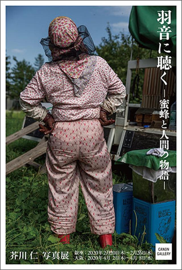 画像: キヤノン:キヤノンギャラリー|芥川 仁 写真展:羽音に聴く 蜜蜂と人間の物語