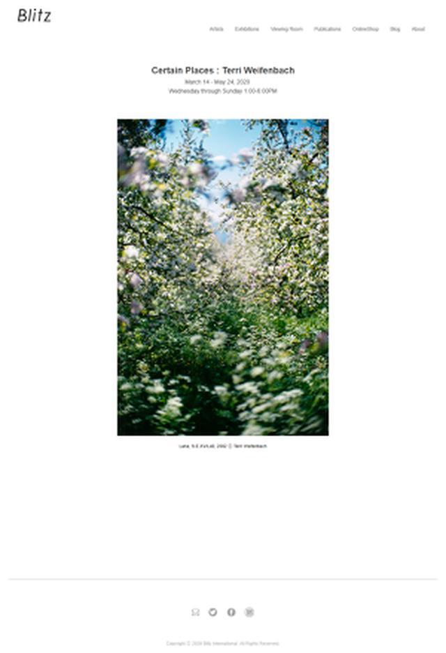 画像: TOP of Blitz Gallery ブリッツ・ギャラリーのウェブサイトです。 テリ・ワイフェンバック写真展「Certain Places」