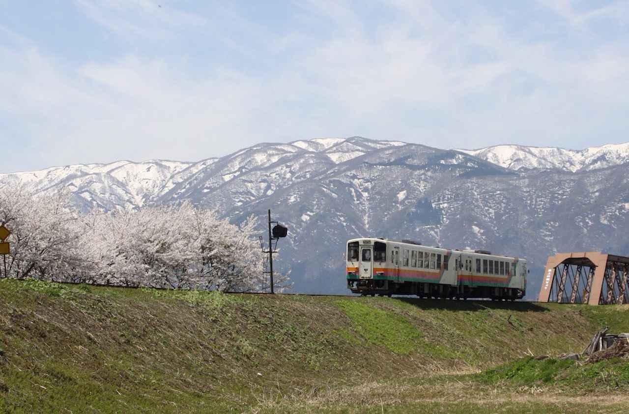 画像: 桜と残雪を背景に(写真奥は日本最古の現役鉄橋)