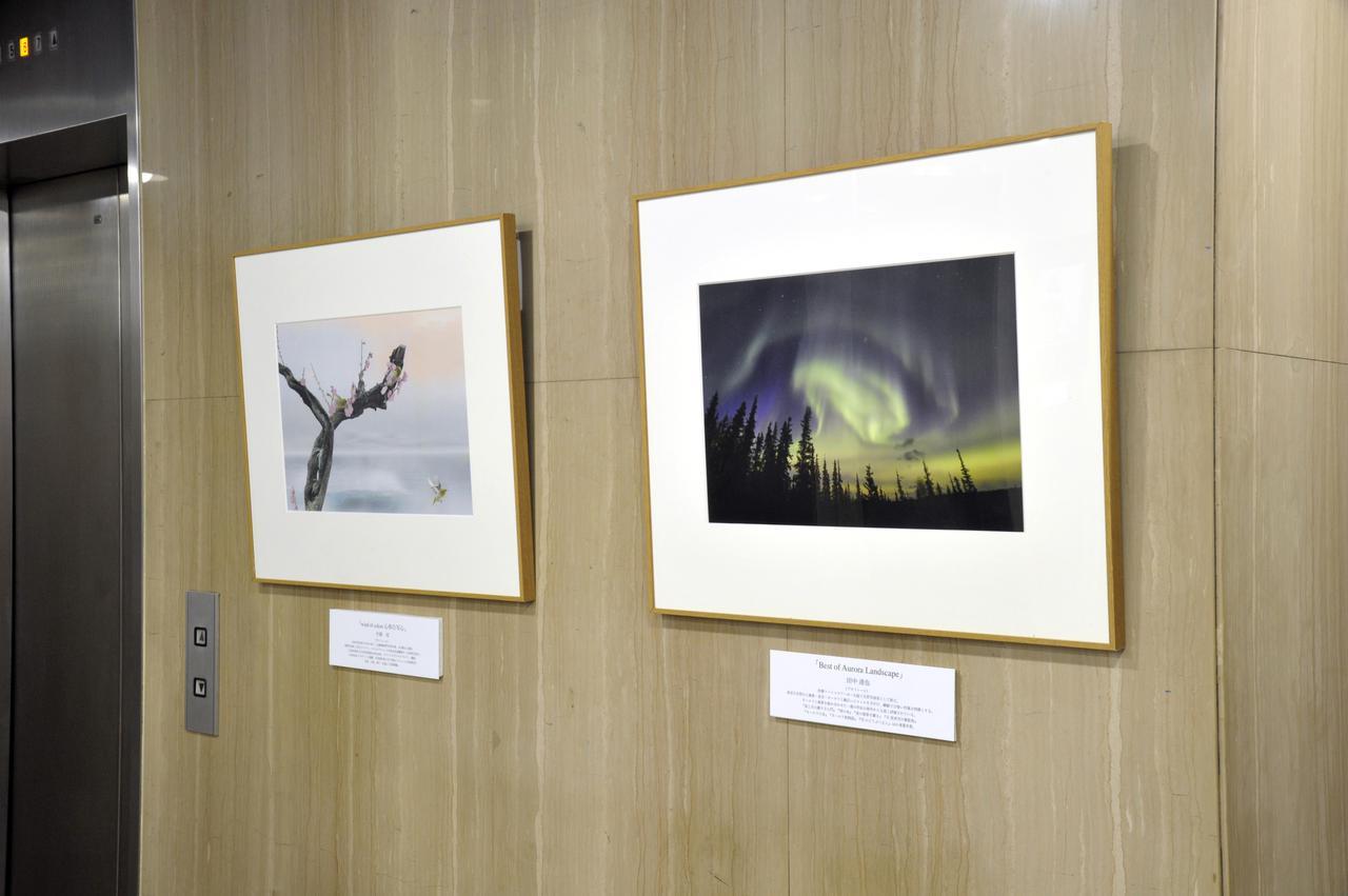 画像: ▲展示作品(敬称略)、左から片岡司、田中達也。 mm-style.jp