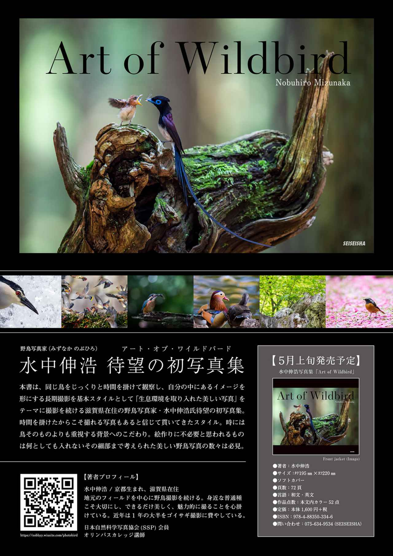 画像1: 野鳥写真家・水中伸浩さんの初写真集「Art of Wildbird」が 好評発売中!