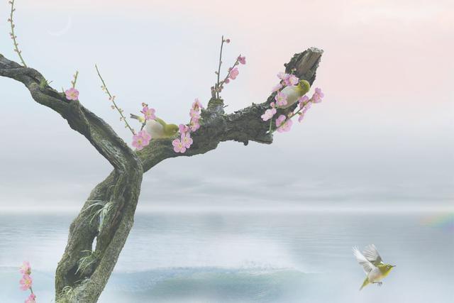 画像: ▲片岡司「wind of colors 心和む写心」より。 mm-style.jp