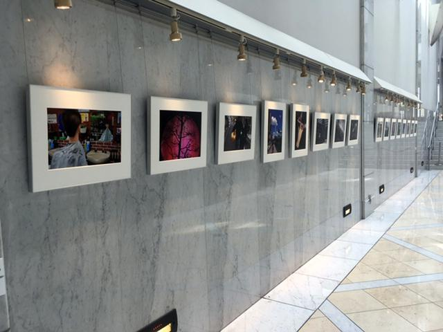 画像1: 写真家親子の競演です。元・日本写真家協会会長の熊切圭介氏と、ご子息の熊切大輔氏がロングラン個展を始めています。