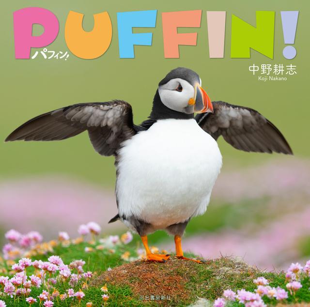 画像: 写真集「パフィン!」も同時発刊予定!