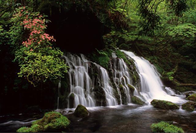 画像: 元滝伏流水
