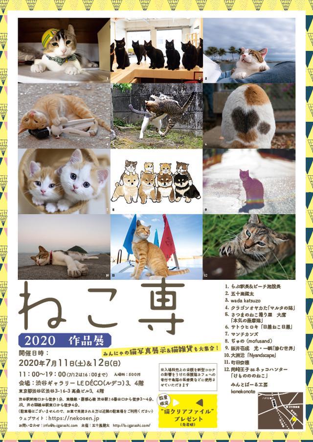 画像: ねこ専2020 in 渋谷ルデコ – ねこ専