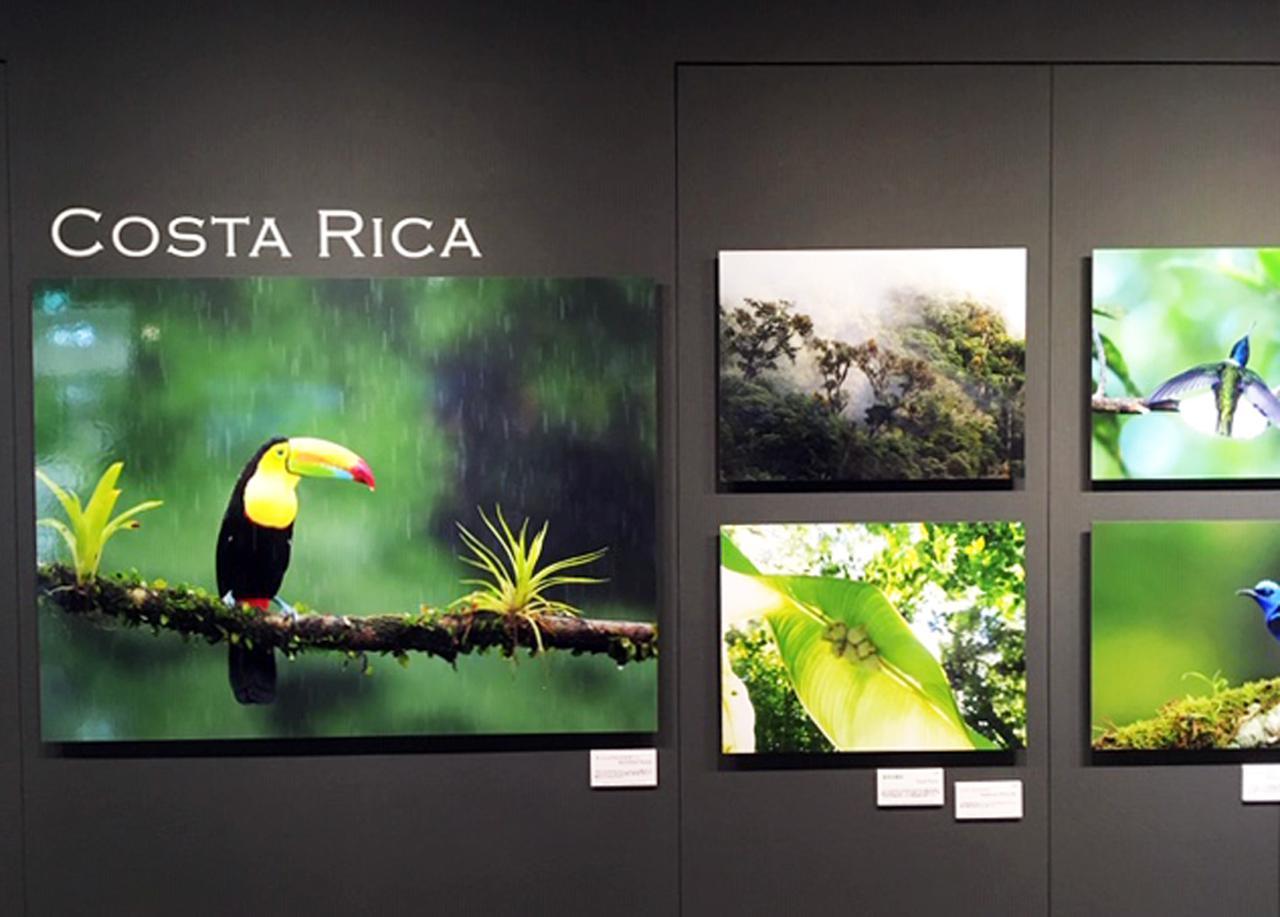 画像: 中野耕志写真展『OM-Dと旅する世界の野鳥』は、オリンパスギャラリー東京でただ今開催中です!!