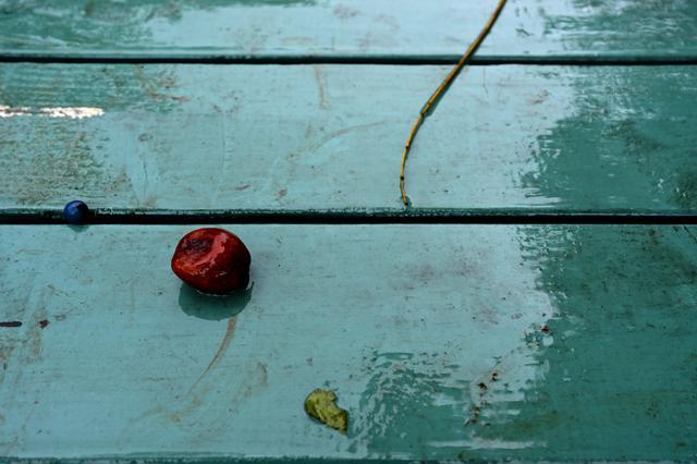 画像3: 展示作品から。©佐藤倫子