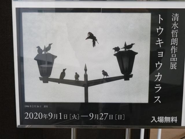 画像: 清水哲朗写真展「トウキョウカラス」がJCIIフォトサロン(東京・半蔵門)で本日9月1日(火)より9月27日(日)まで開催!