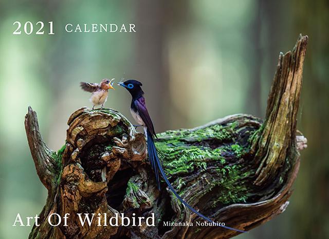 画像: カメラマン 2021カレンダーシリーズ 25 水中伸浩 「Art Of Wildbird」-モーターマガジン Web Shop