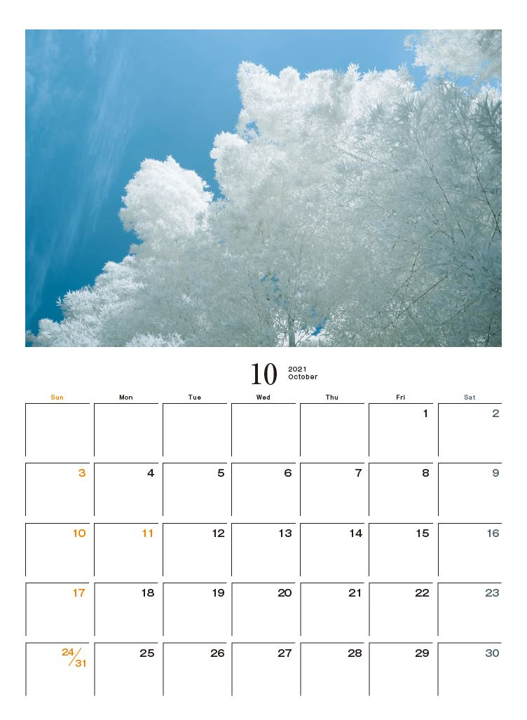 Images : 11番目の画像 - カメラマン2021カレンダー、荒幡信行「赤外線の情景」 - Webカメラマン
