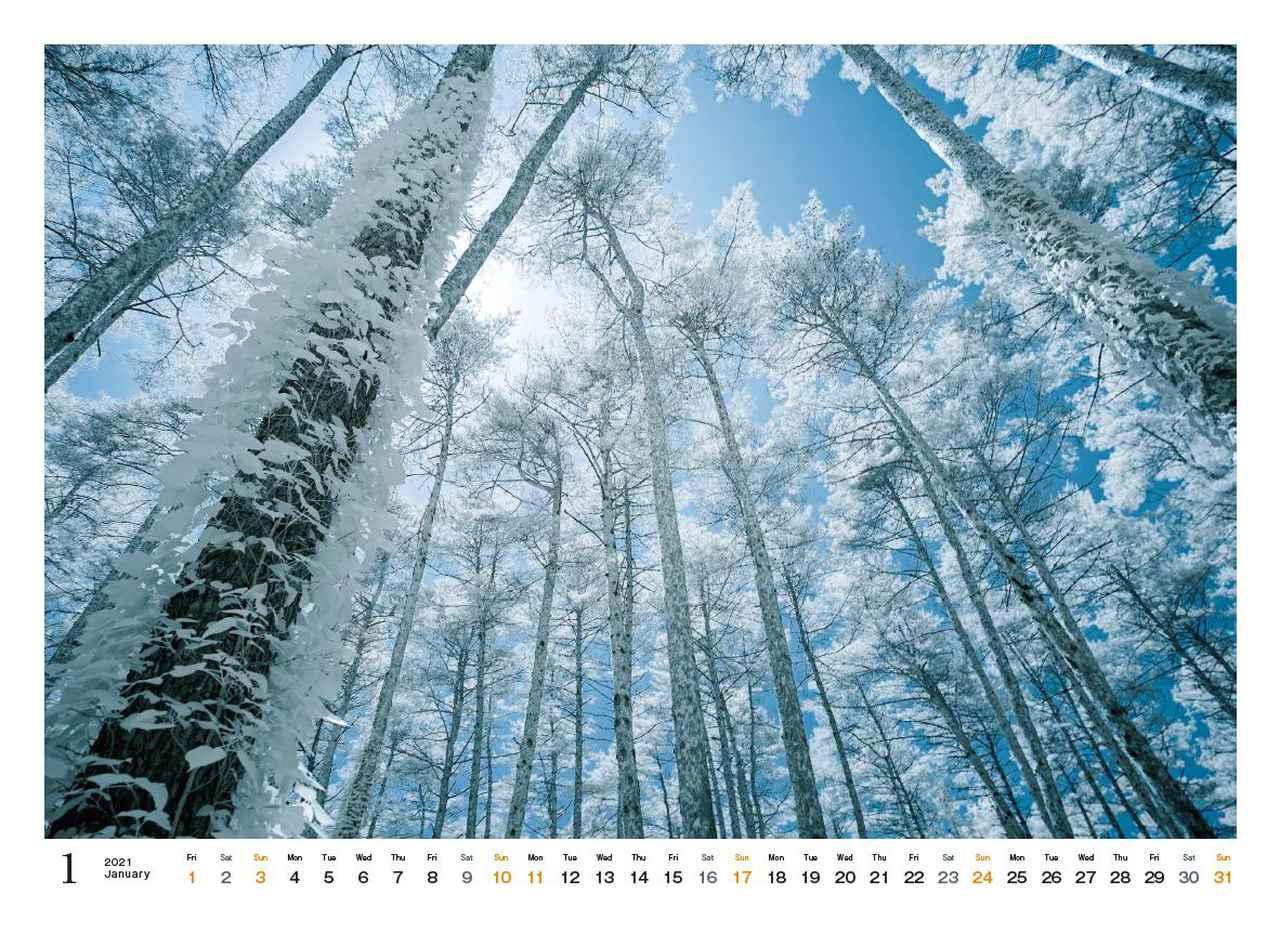 Images : 2番目の画像 - カメラマン2021カレンダー、荒幡信行「赤外線の情景」 - Webカメラマン
