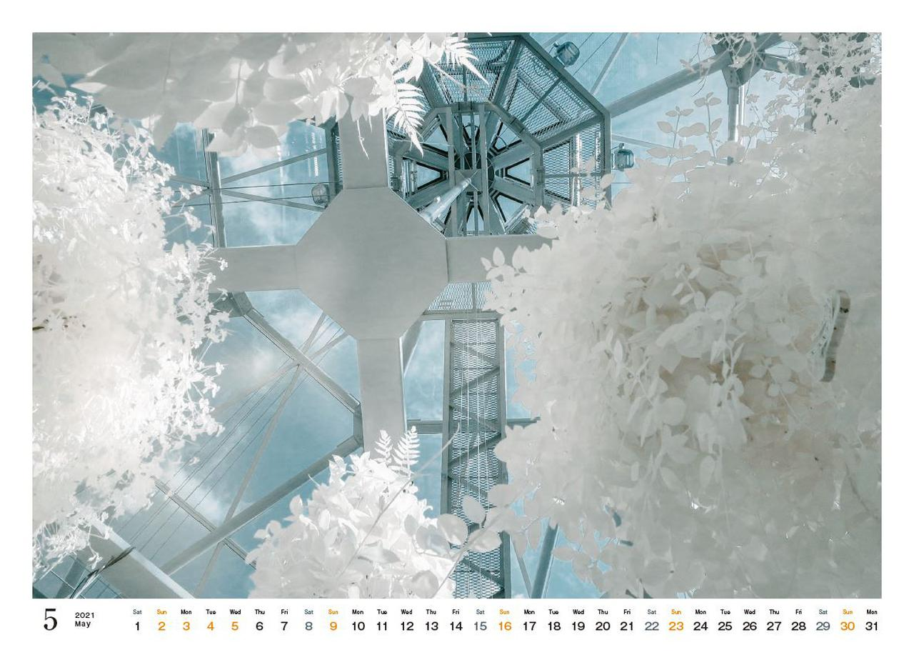 Images : 6番目の画像 - カメラマン2021カレンダー、荒幡信行「赤外線の情景」 - Webカメラマン