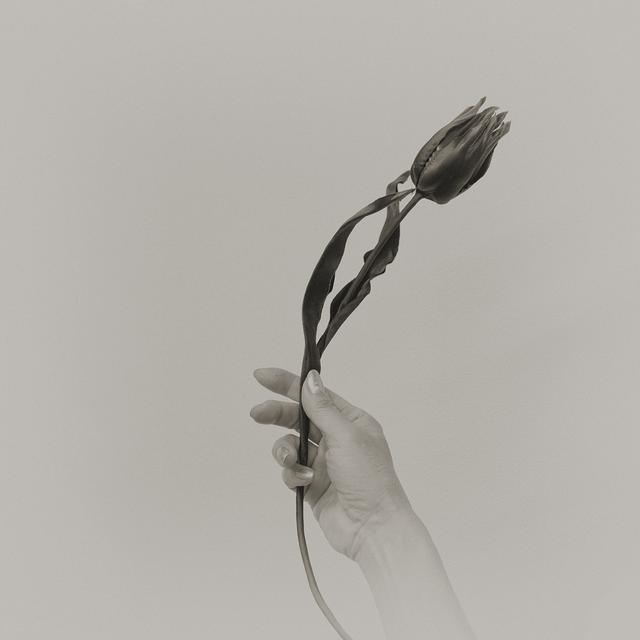 画像3: 展示作品より©千代田路子