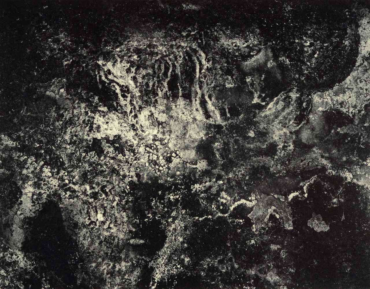 画像3: 展示作品より©️川田喜久治