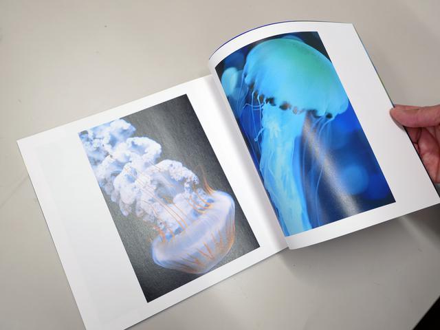 画像: オールカラー48ページ(本体)で、サイズは縦×横:200×225mm。税込み2200円で発売中。詳しくは、こちらまで♪ Nana Misaki's Store https://booth.pm/ja/items/3013369