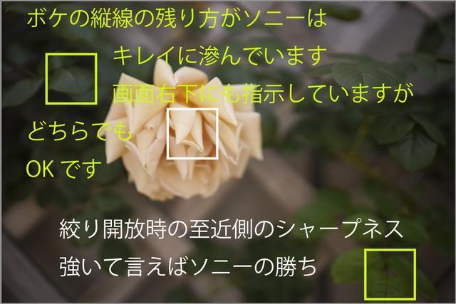 画像1: シーン1