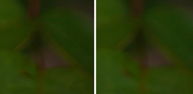 画像: 左がシグマ。画面全体の雰囲気としては、GMが上質な印象で、Artは情緒的だ。観察してみて色収差が少ない、もしくは目立たない色であるのはArt。GMは若干パープル系統の収差が見つかることがある。ともあれ補正は簡単なので大きな差ではないと思う。