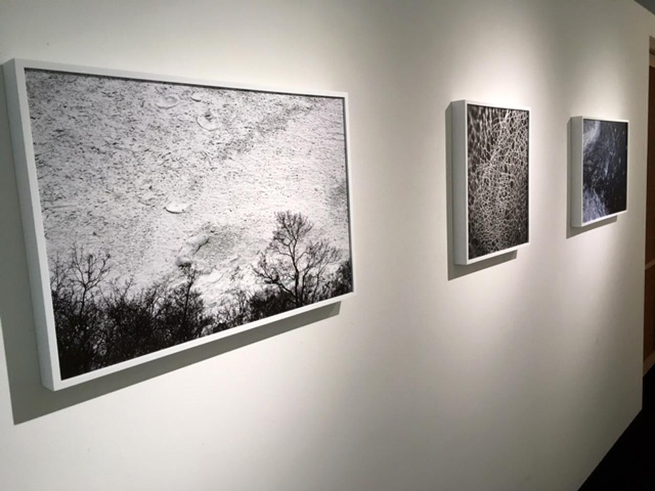 画像2: GOTO AKI写真展『event horizon -事象の地平線-』。一流の商社勤めを辞めてフリーランスとなった変わり種写真家のGOTO AKIさん。