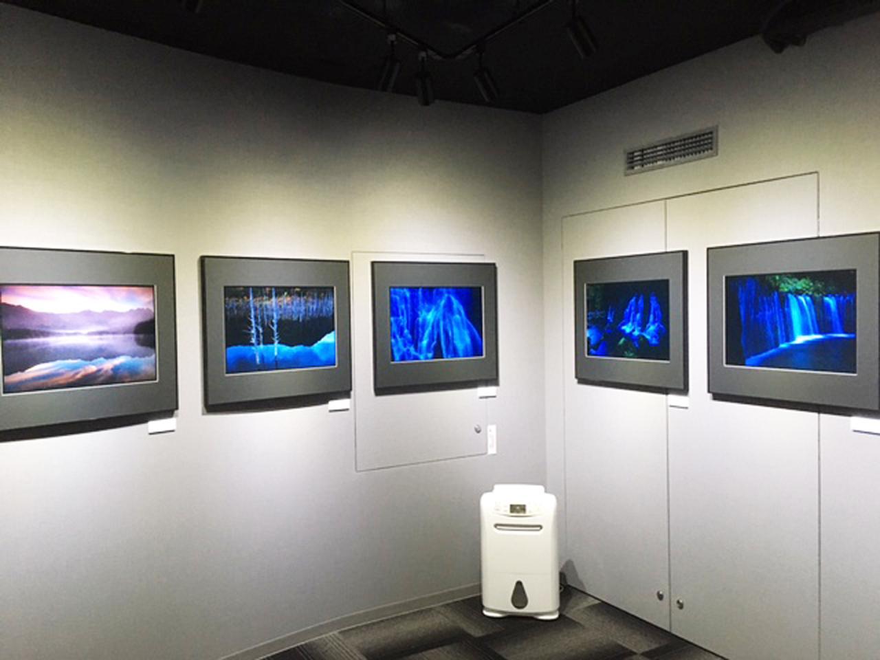 画像2: 井村 淳 写真展『小さな国の大自然』は、新装なったTAギャラリー(竹内敏信記念館)にて開催中です!