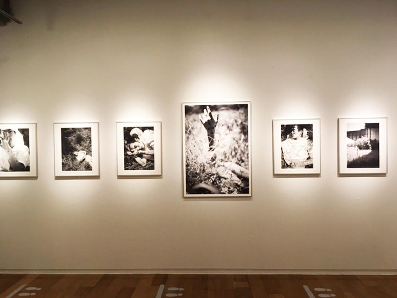 画像1: 舞山秀一作品展『BOTANIZATION』。黒白プリントとカラープリントのヒュージョンです。