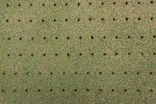 画像: 無数の小さな穴が開いているグリーン