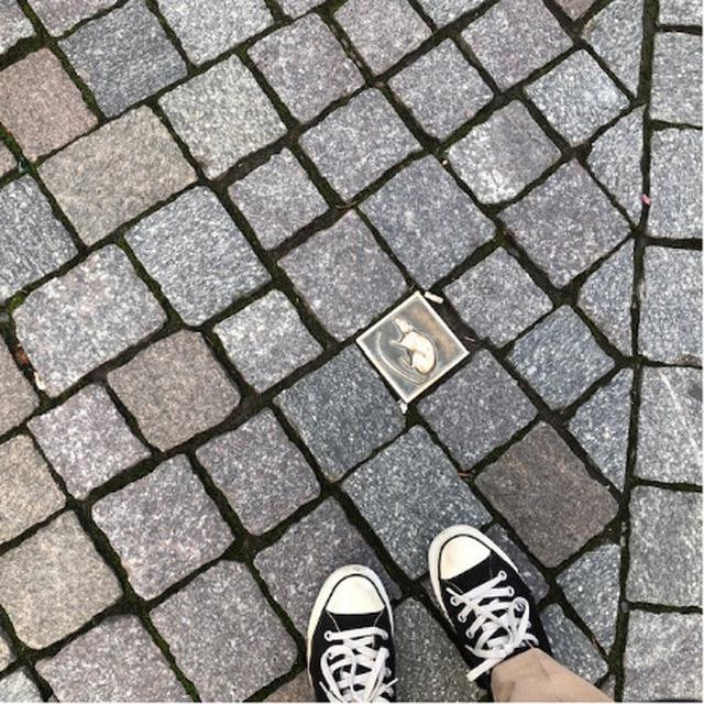 画像: 足元にもネズミが/遠藤撮影