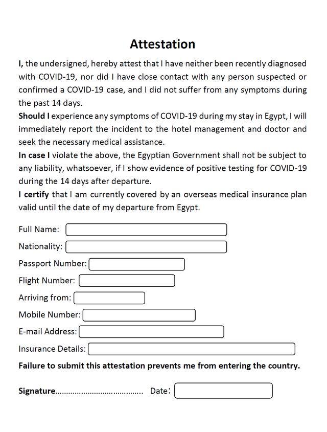 画像: ※入国時に提出が必要な申告書(イメージ)/現地手配会社提供
