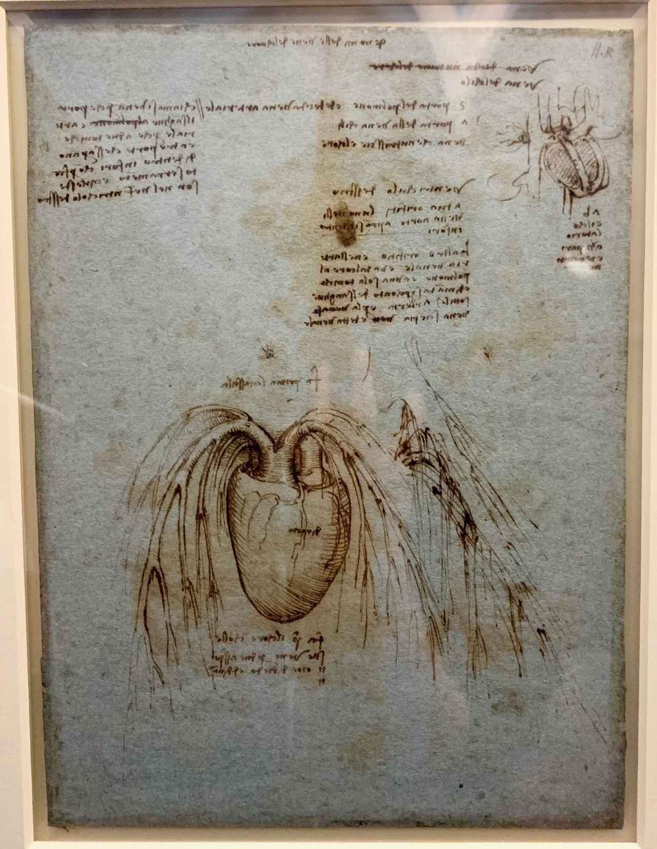 画像: レオナルド・ダ・ヴィンチの手稿の一部(2019年6月 弊社スタッフ撮影)
