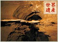 画像: スタークフォンテン洞窟(南アフリカ共和国)登録基準(ⅱ)(ⅵ)