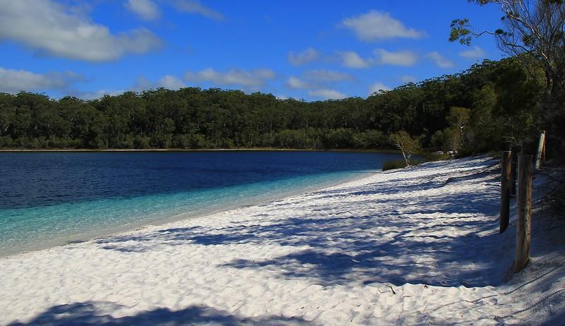 画像: フレーザー島(オーストラリア連邦)登録基準(ⅶ)(ⅷ)(ⅸ) www.flickr.com