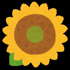 画像1: 花カレンダー2021<5月>『一面に広がる花畑!初夏を彩るスペインのひまわり』【好奇心で旅する海外】<花咲くワールド>