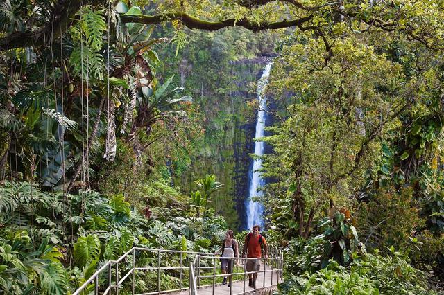 画像: 迫力のアカカ滝(ハワイ島)