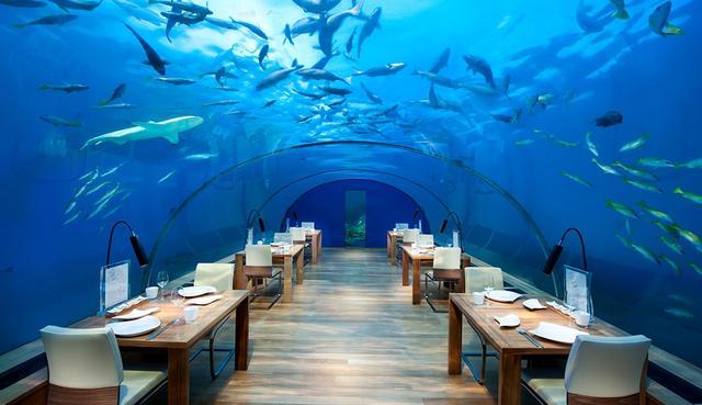 画像: ガラス張りの水中レストラン『イター』