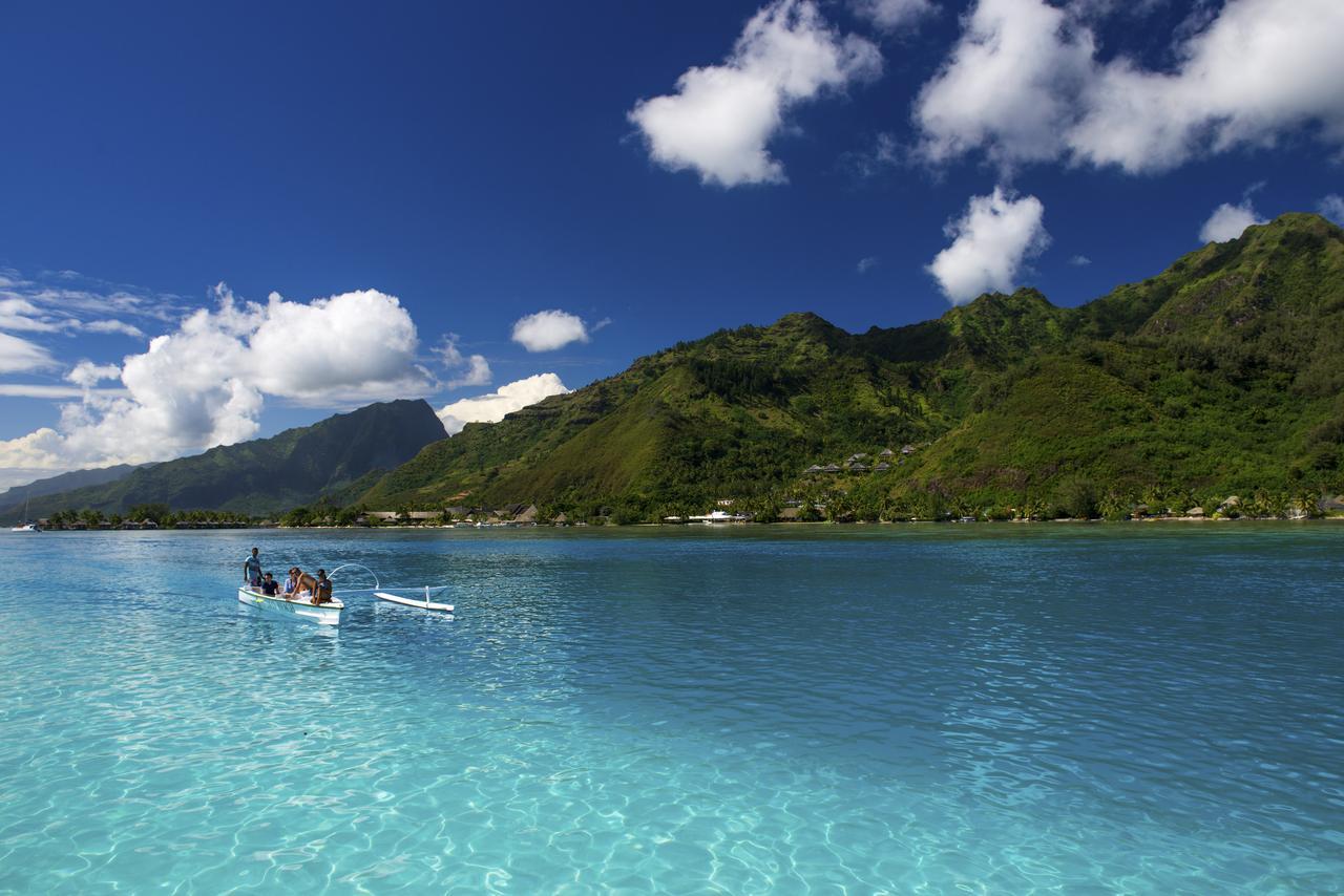 画像: 海原に出るからこそ!モーレア島の緑も堪能