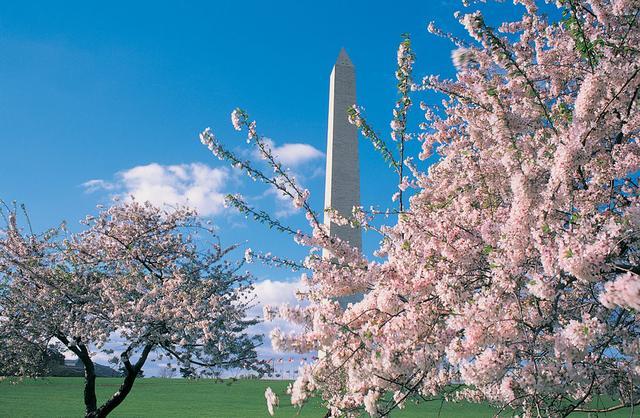 画像: <プレミアムステージ・ゆったり旅>『日本航空利用(成田~米国間) 季節を愉しむアメリカ東海岸8日間|クラブツーリズム