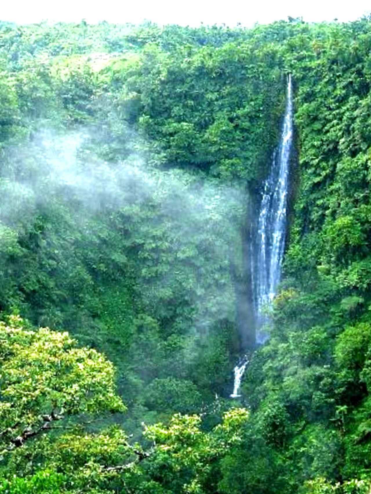 画像: パパパパイタイの滝
