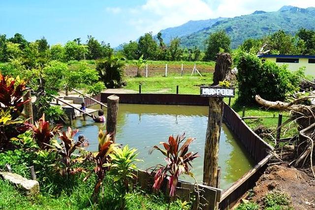 画像: 大自然に囲まれた泥温泉は水着着用で入ります