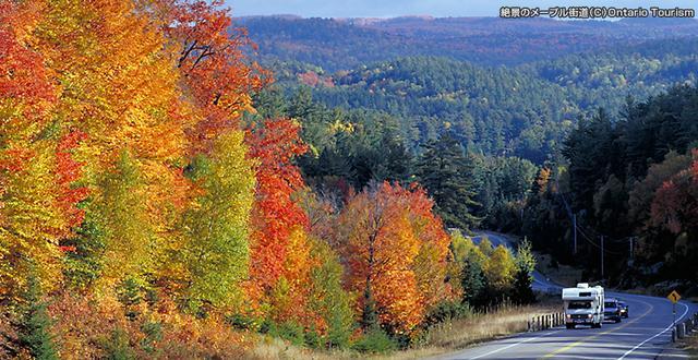 画像1: 紅葉のカナダ旅行・ツアー・観光|クラブツーリズム