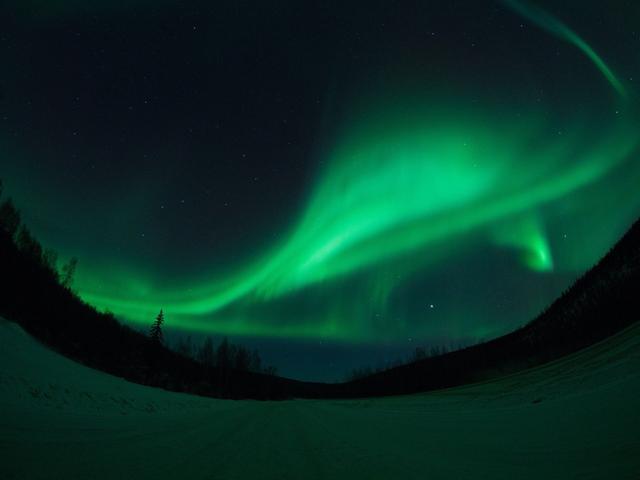 画像: 日本航空利用 アラスカのオーロラ|チャーター便利用ツアー・旅行|クラブツーリズム